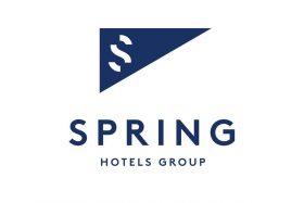 spring logo blanco